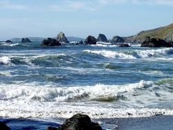 Pet Friendly Vacation Rentals Dillon Beach Ca